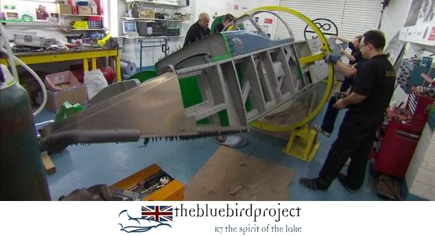 The Bluebird Project